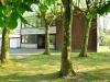 neuekitapurzelbaum-6-von-34
